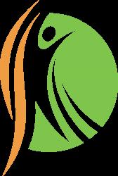 Physiotherapie Schleifer